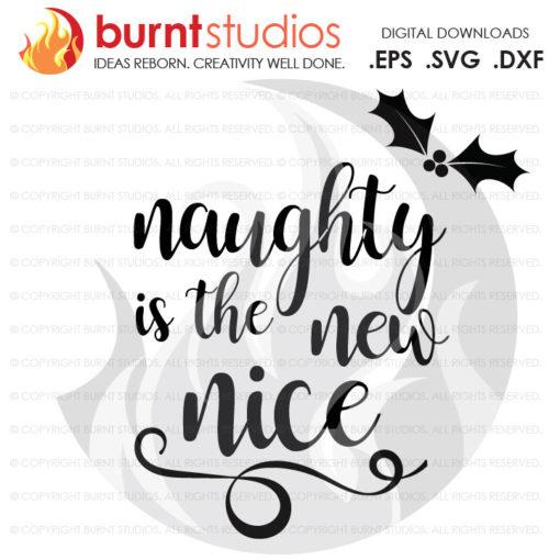 Digital File, Naughty or Nice, Mistletoe, Xmas, Christmas, Shirt Design, Decal Design, Svg, Png, Dxf, Eps file