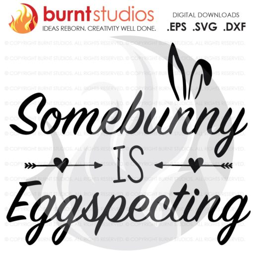 SVG Cutting File, Some Bunny is Expecting, Easter, Jesus, Christian, Faith, Cross, Bible, Belief, God, Religious, Easter Bunny, Pregnancy
