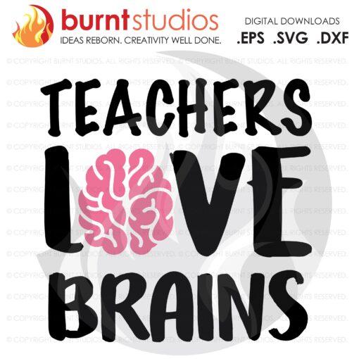 SVG Cutting File, Teachers Love Brains, Essential, Class of, Students, School, College, Academics, University, Professor, digital download